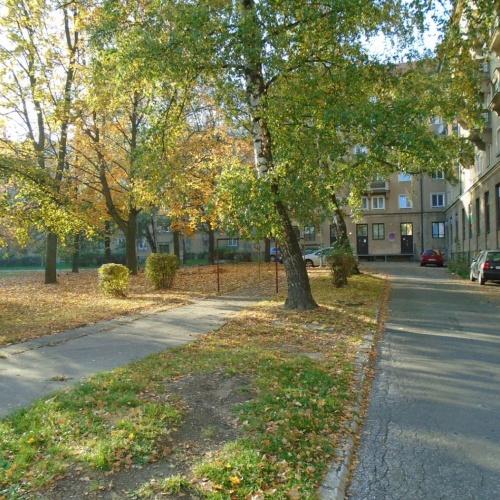 Revitalizace vnitrobloku náměstí Jana Nerudy/ Hlavní třída